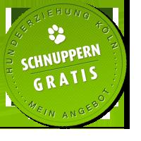 HundeErziehung Köln: Schnupperstunde GRATIS