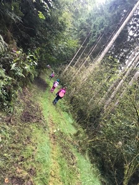 Auf der Pirsch: Wir suchen Waldtiere im Gebüsch