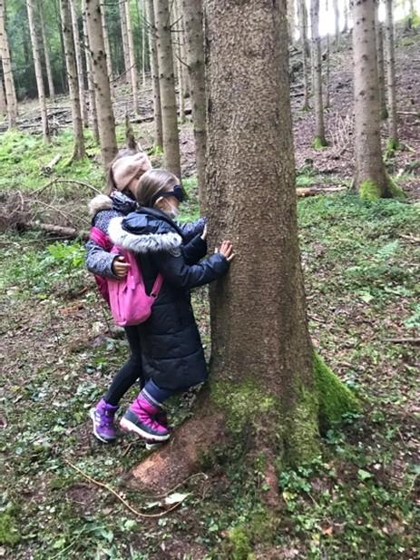 Wir ertasten blind verschiedene Bäume.