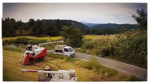 棚田で作業をする人と耕作機、軽トラック