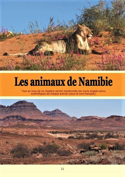 Les animaux de Namibie ; Géologie, faune et flore de Namibie