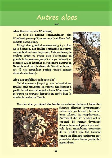 Les aloes ; Géologie, faune et flore de Namibie