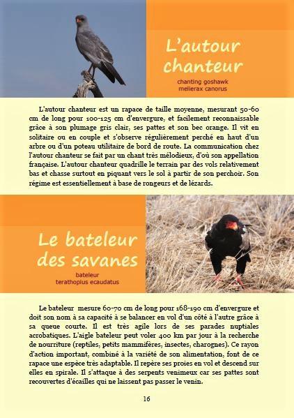Le bateleur des savanes et l'autour chanteur ; Géologie, faune et flore de Namibie