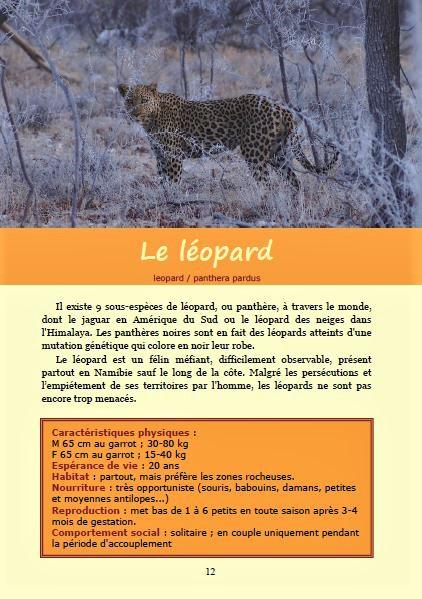 Le léopard ; Géologie, faune et flore de Namibie