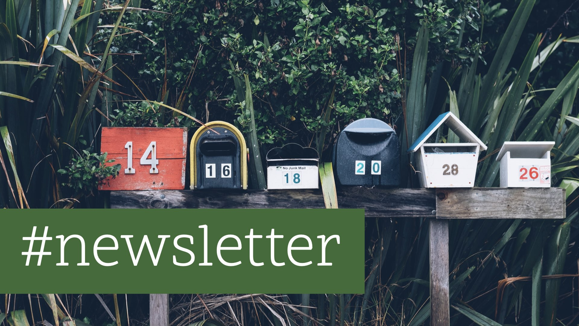 E-Mail-Marketing: Unterschätzt und missachtet?