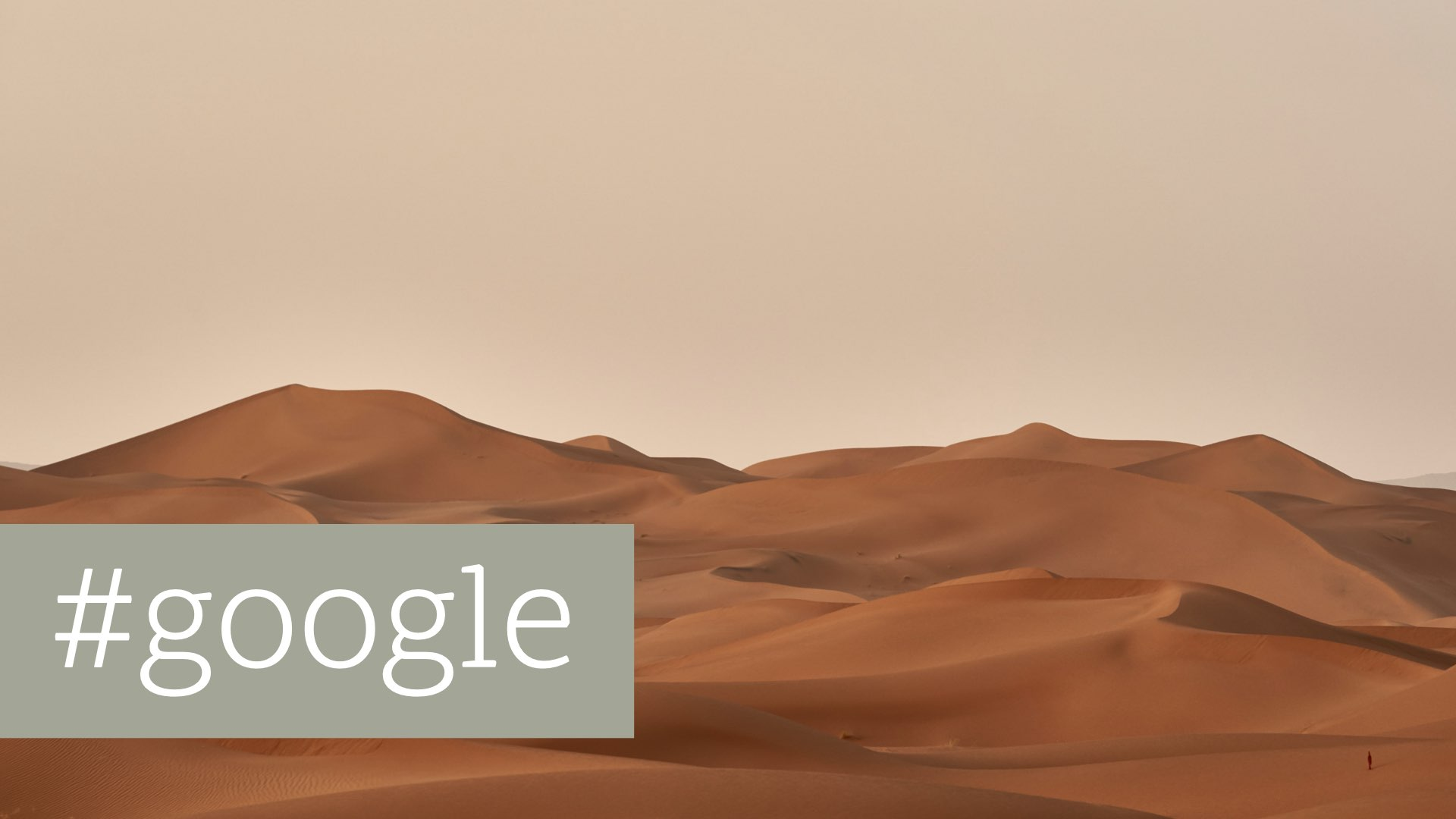 Google Search Quality Rating Program