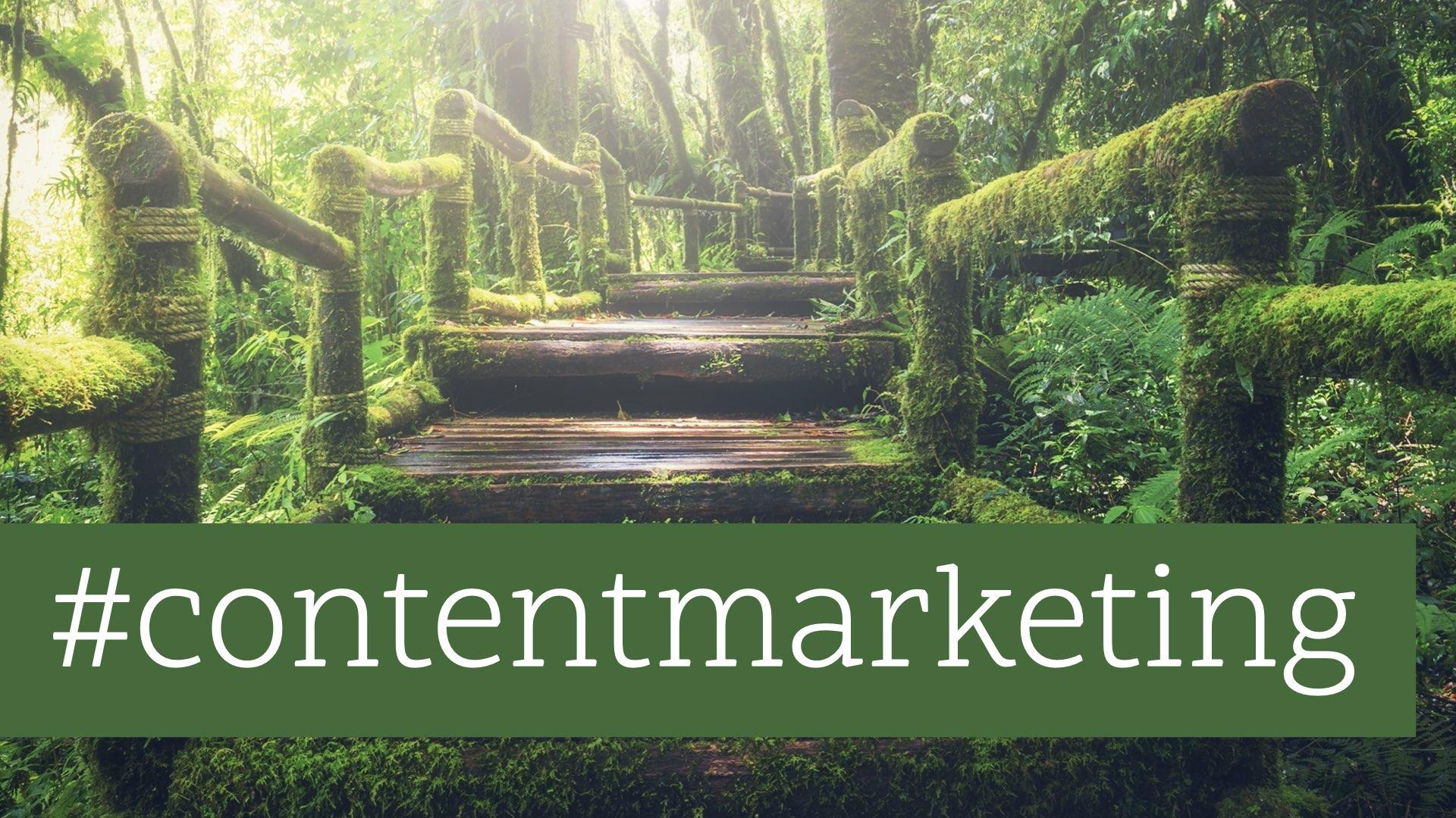 Sei ein Rockstar: Mit Content Marketing die Welt retten