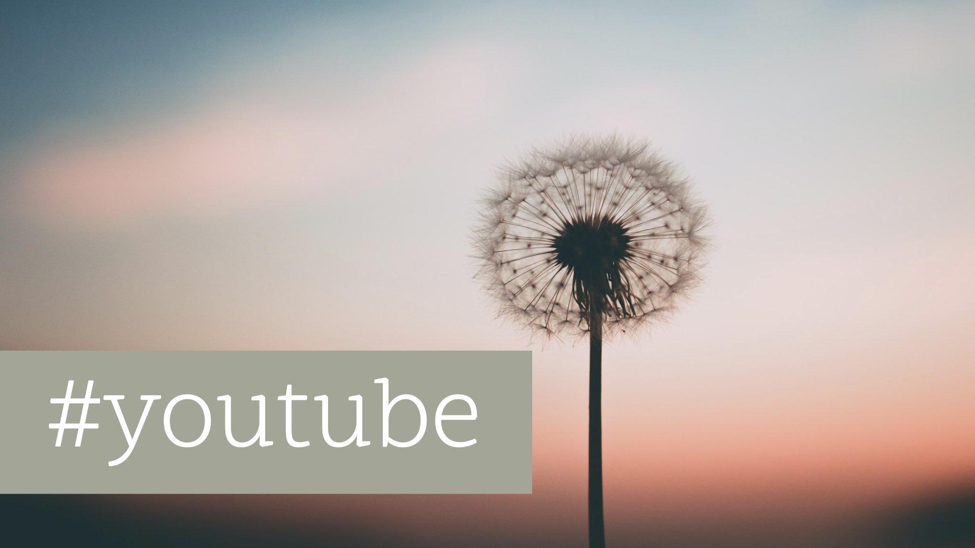 Auf YouTube erfolgreich sein als Unternehmen