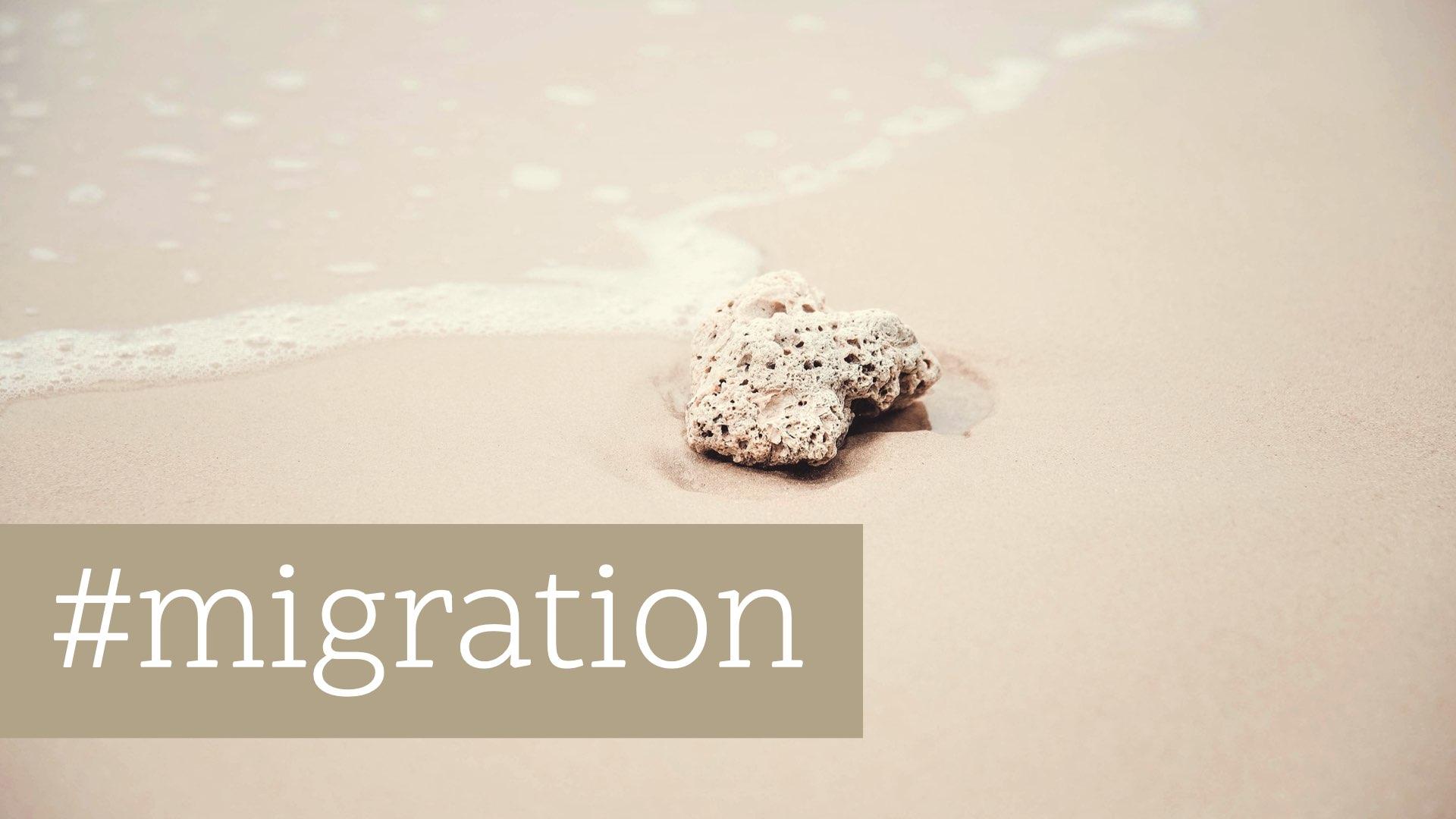 On the Move: Arbeit und Migration in der Schweiz