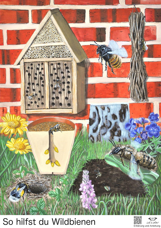 Wildbienenposter