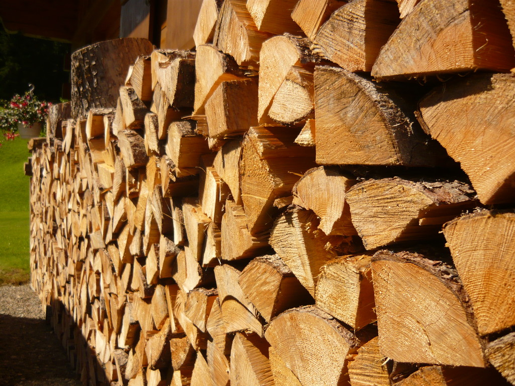 Brennholz für den Winter wird gelagert