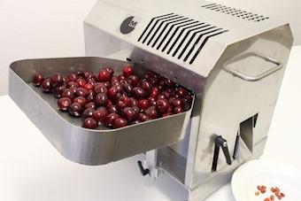 удалитель косточки вишни и мелкой сливы 75 кг в час