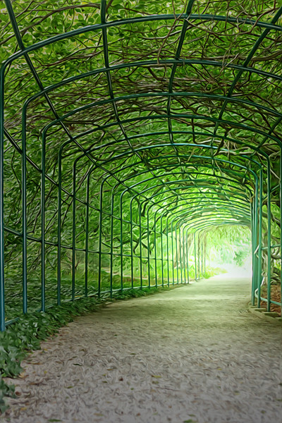 grüner Tunnel