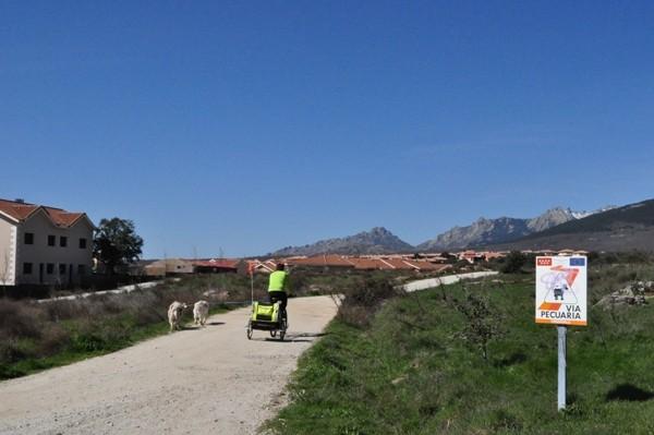 La Cañada con la Pedriza al fondo