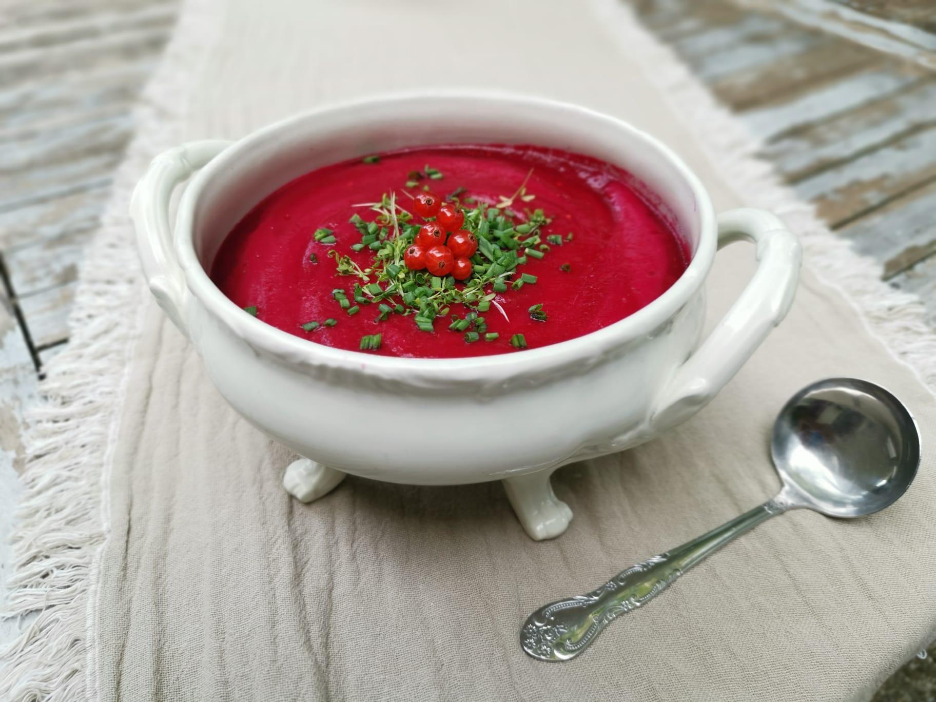 Rote Rüben (Pastinaken) Suppe