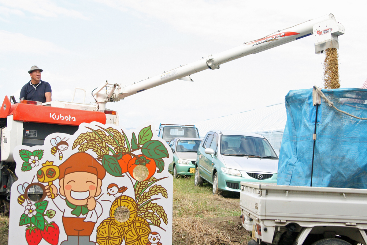 稲刈り作業。コンバインに貯まったもみ殻付きお米を放出です!