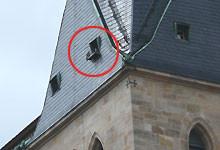 Stadtkirche mit Nistkasten für Wanderfalken Foto: C.Reimers