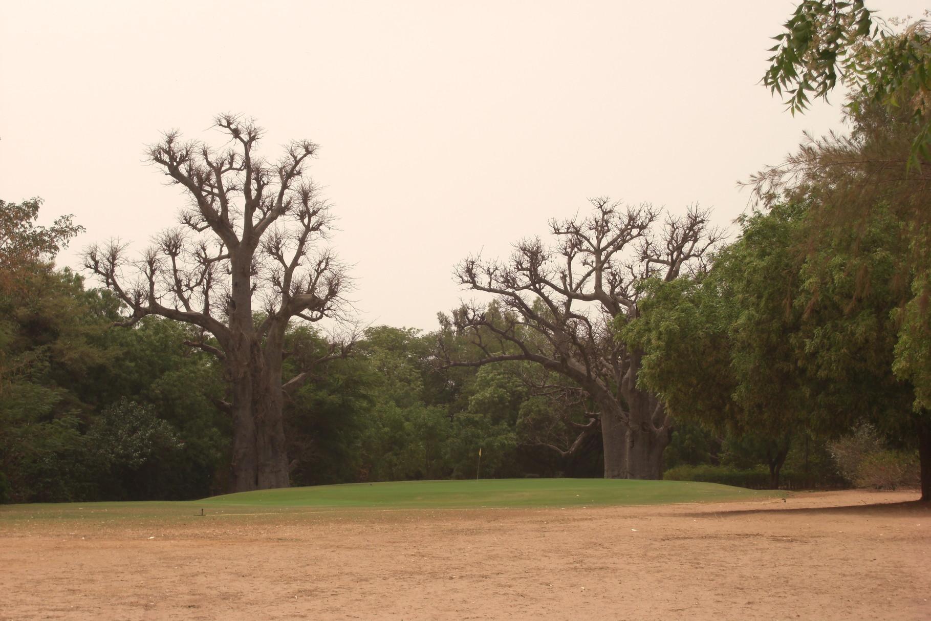 Golf de Saly, green n°18