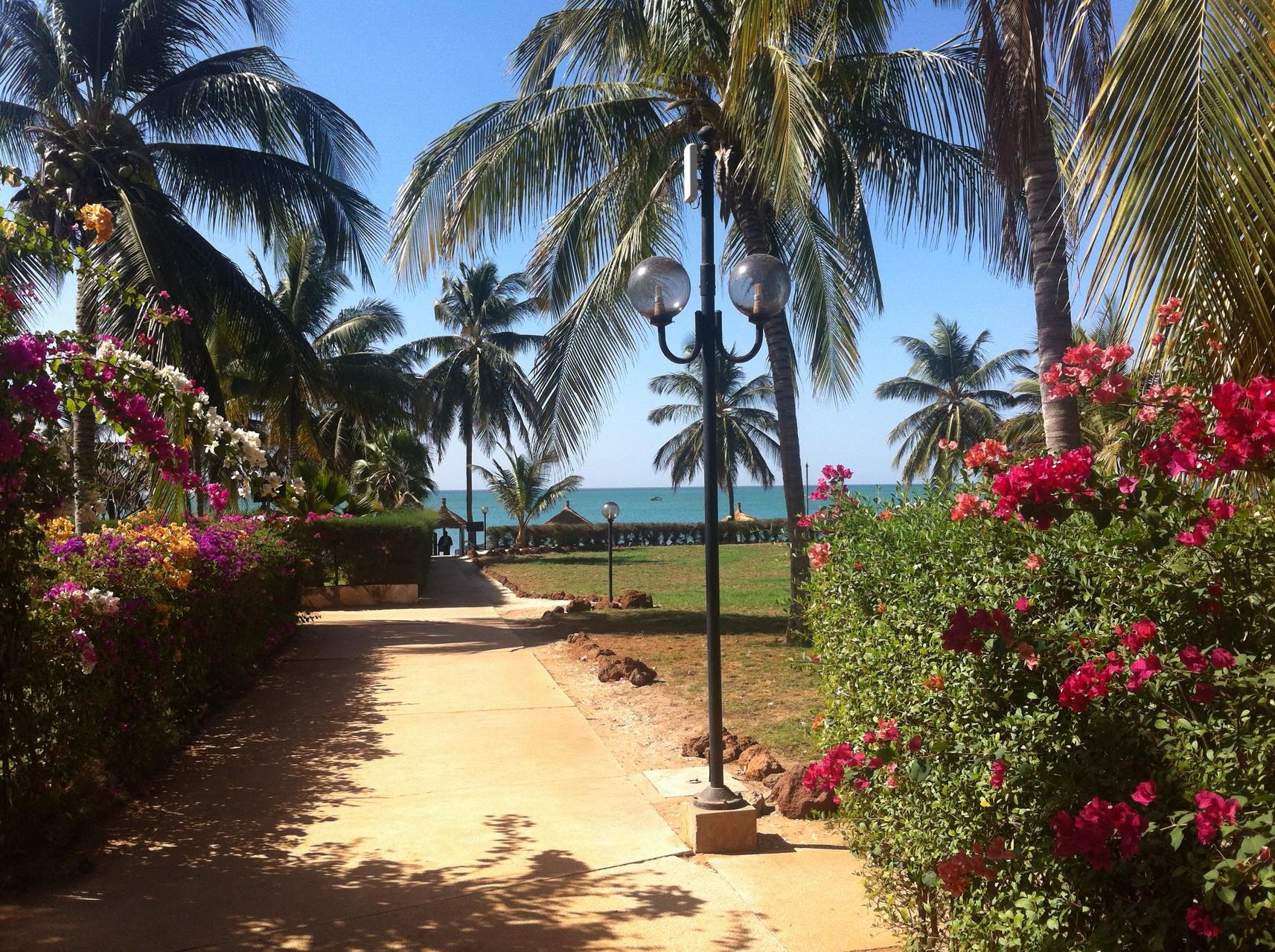 Le chemin qui mène à la plage
