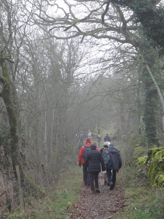 les chemins du causse en hiver (rando du Veyssou- Floirac)