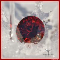 Diamant rubinrot für die Verbindung zur Urschöpfung