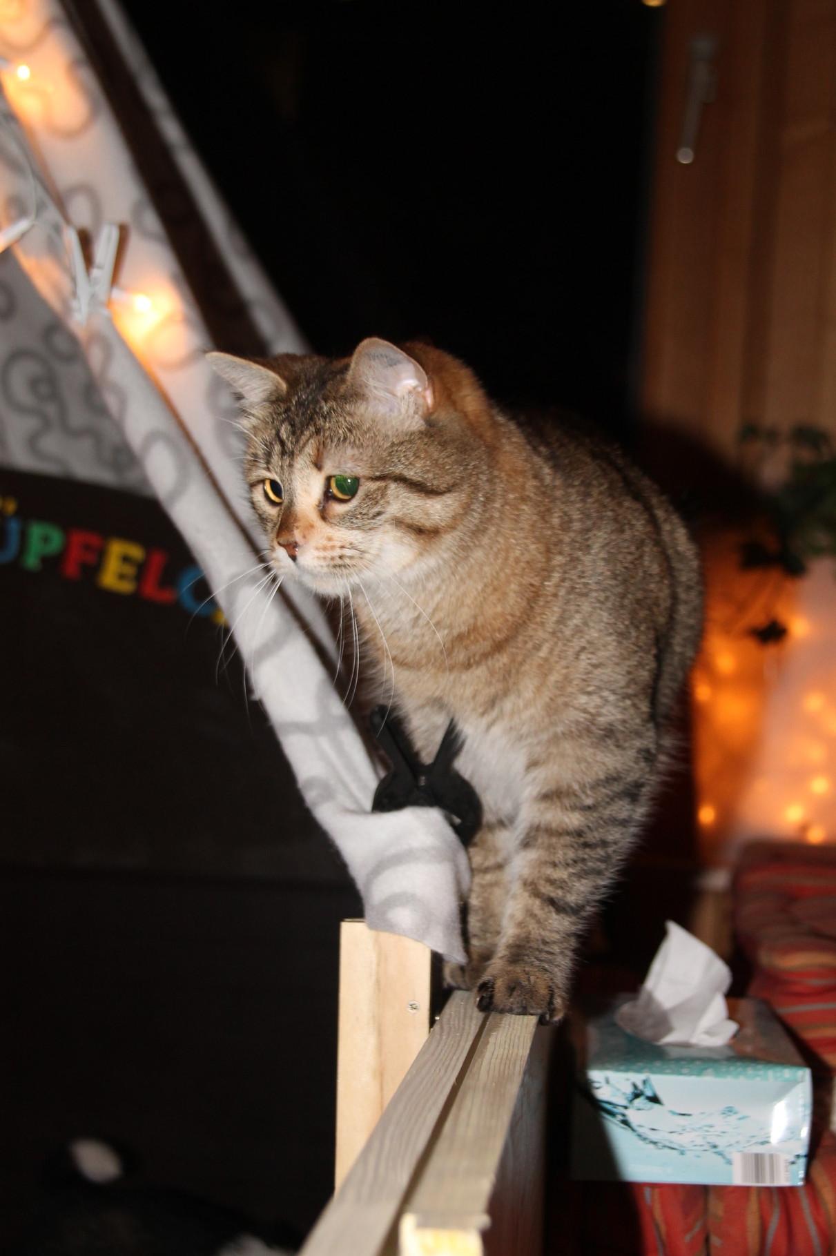 Mary auf Beobachtungsposten