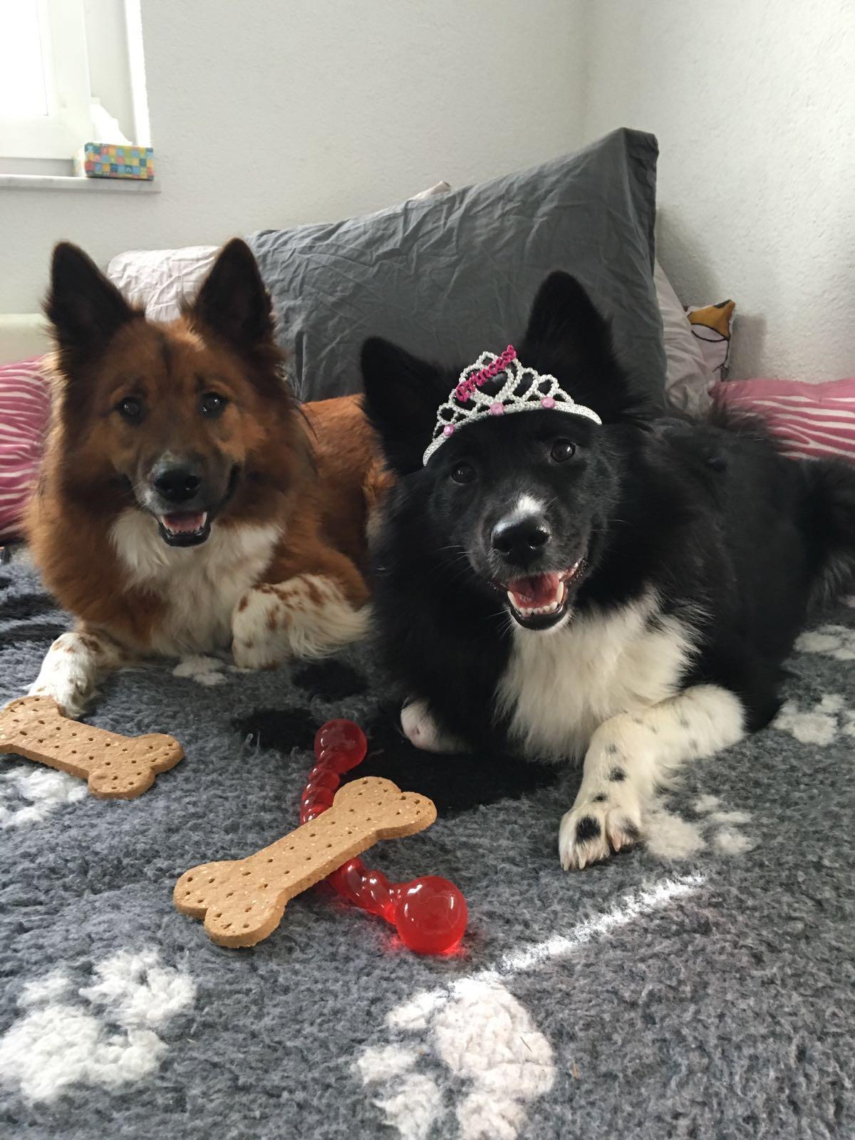 Baduni und Delisha feiern Geburtstag