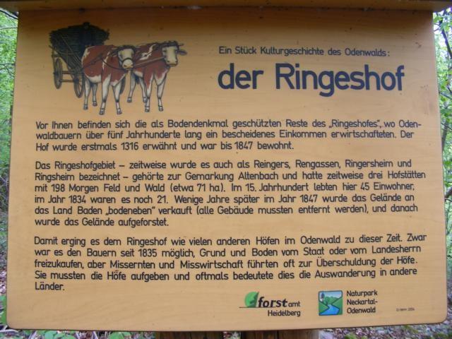 """Schild """"Ringeshof"""""""