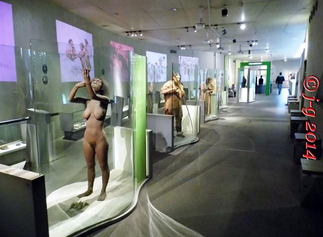 Im Neanderthalmuseum in Mettmann