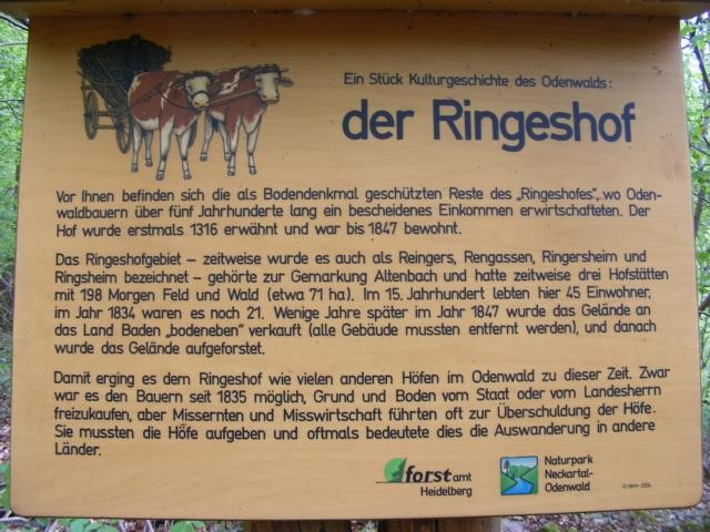 Tafel Ringeshof