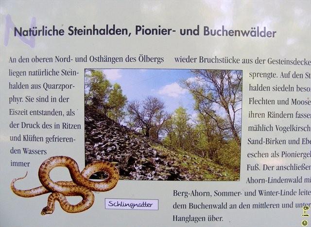 Schlossberg Heppenheim