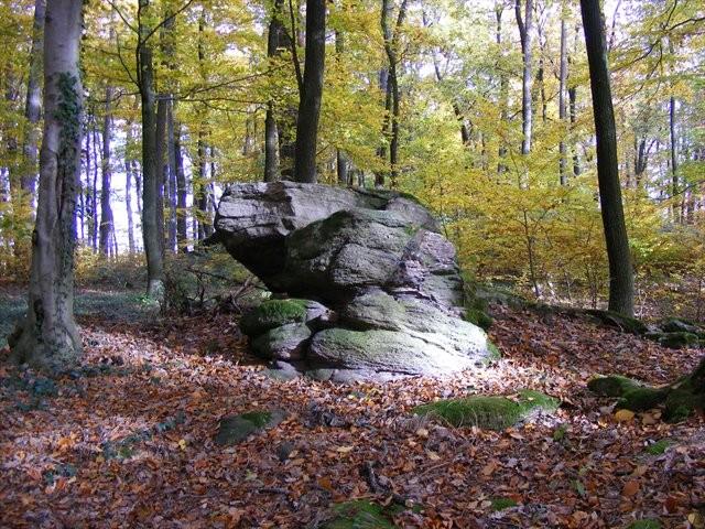 Felsen auf der Böllsteiner Höhe