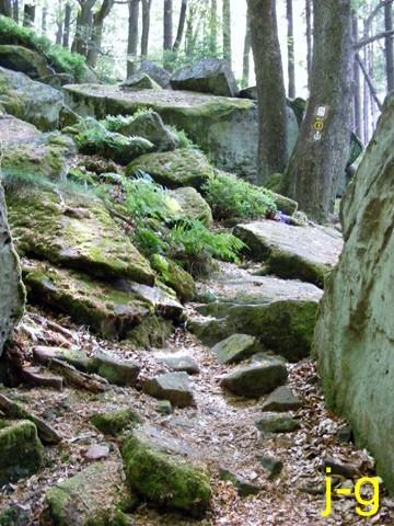 Das Ebersberger Felsenmeer