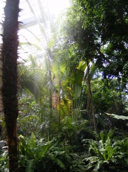 Im Pflanzenschutzhaus