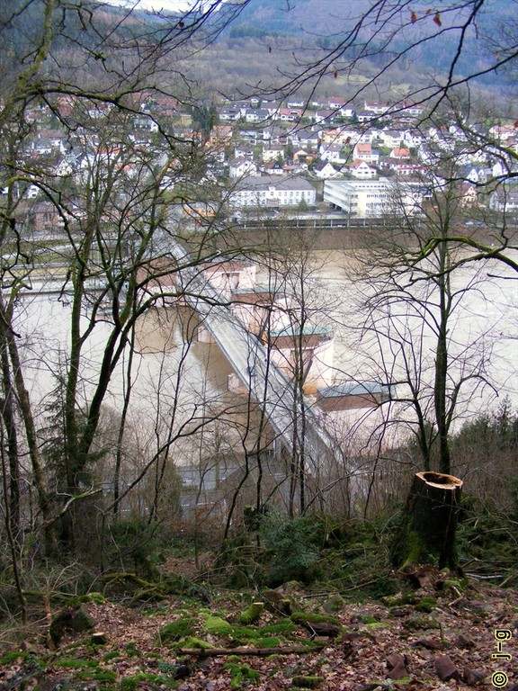 Blick vom Burgweg auf den Neckar