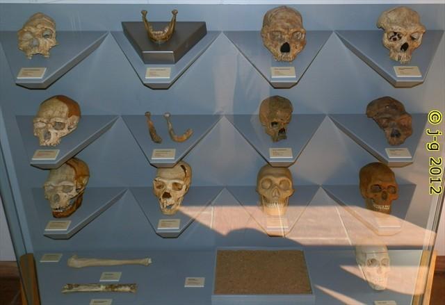 im Museum - Schautafel