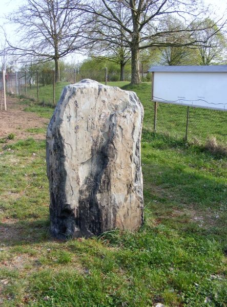 Hinkelstein von Alsbach