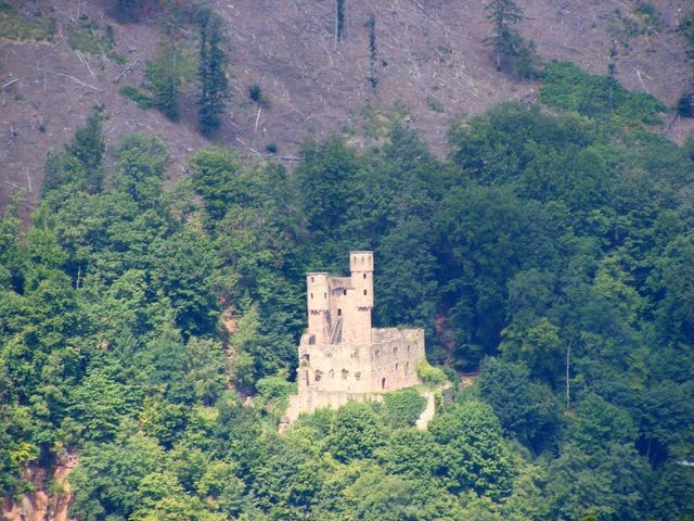 """Burgen am Neckar - Schadeck (""""Schwalbennest"""")"""