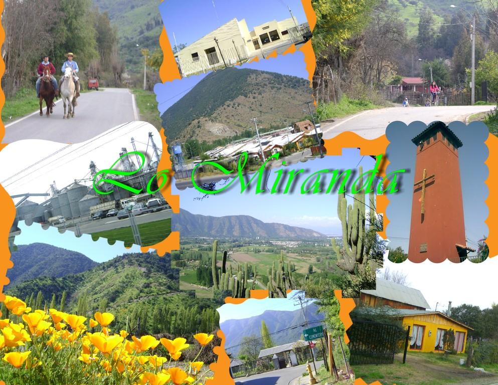 Collage de imágenes de Lo Miranda