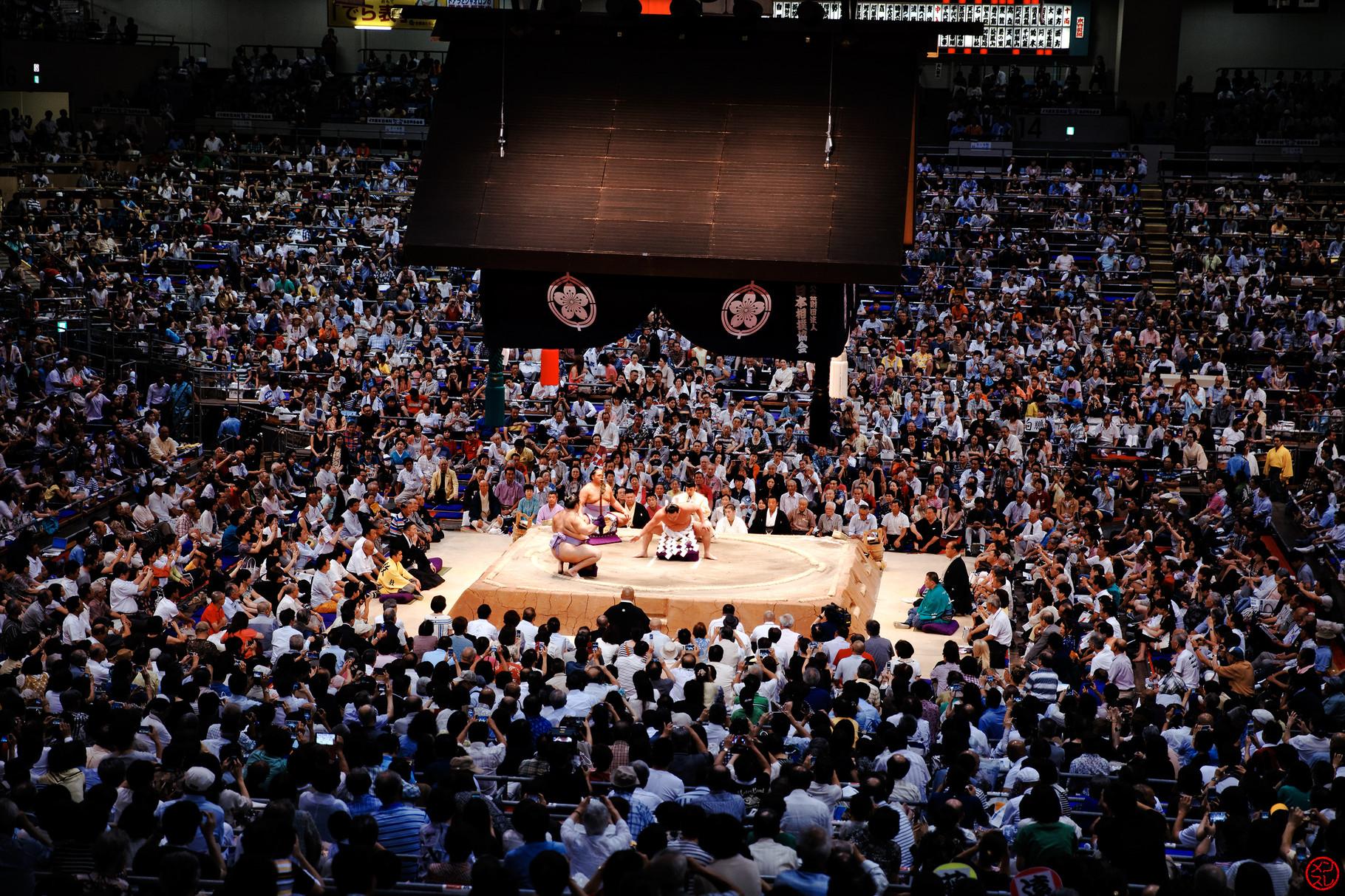 Sumo, Nagoya, août 2015