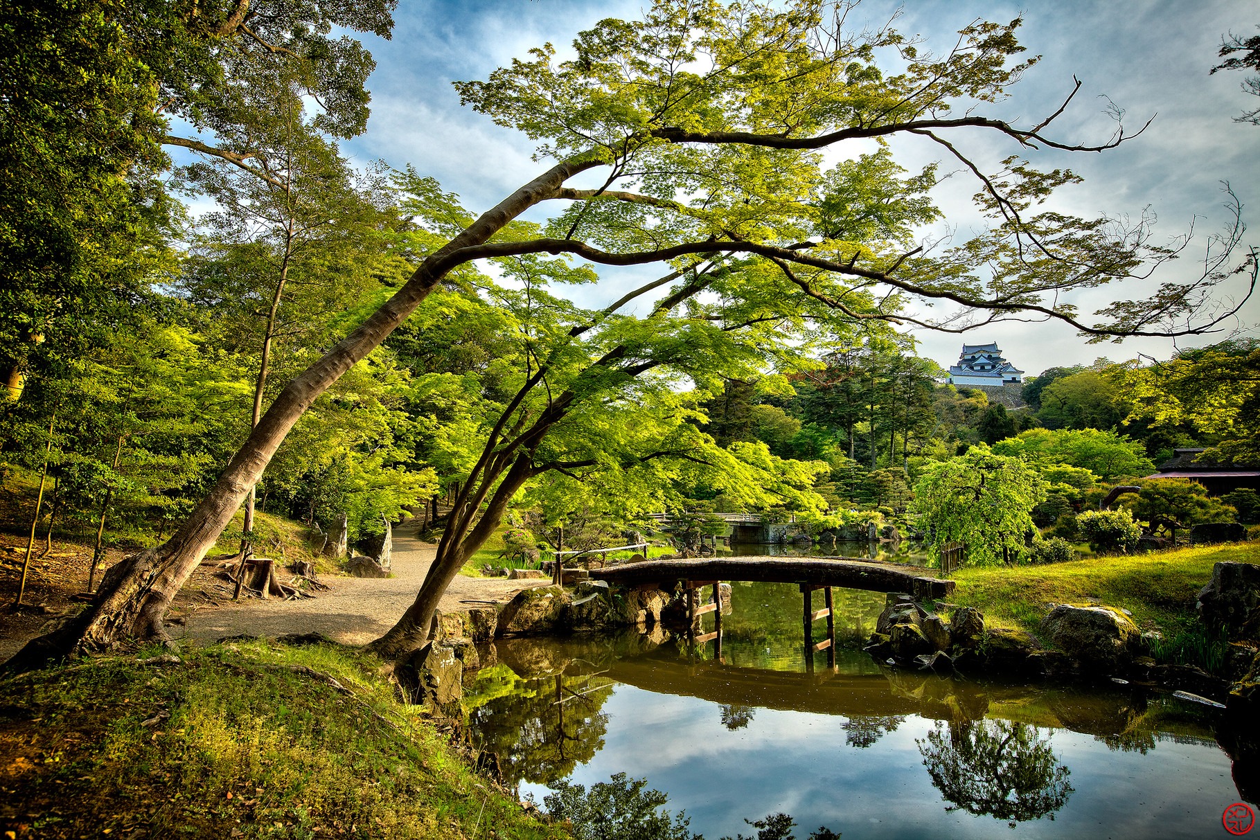 Jardin à Hikone, Japon