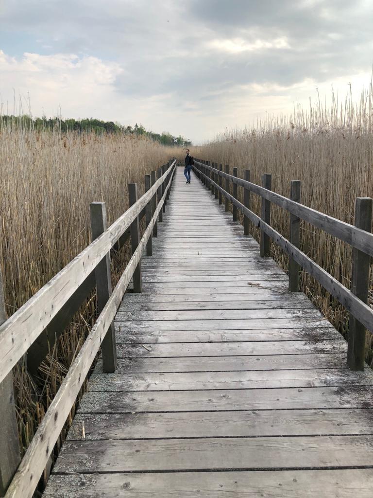 Irina am Naturreservat Tåkern