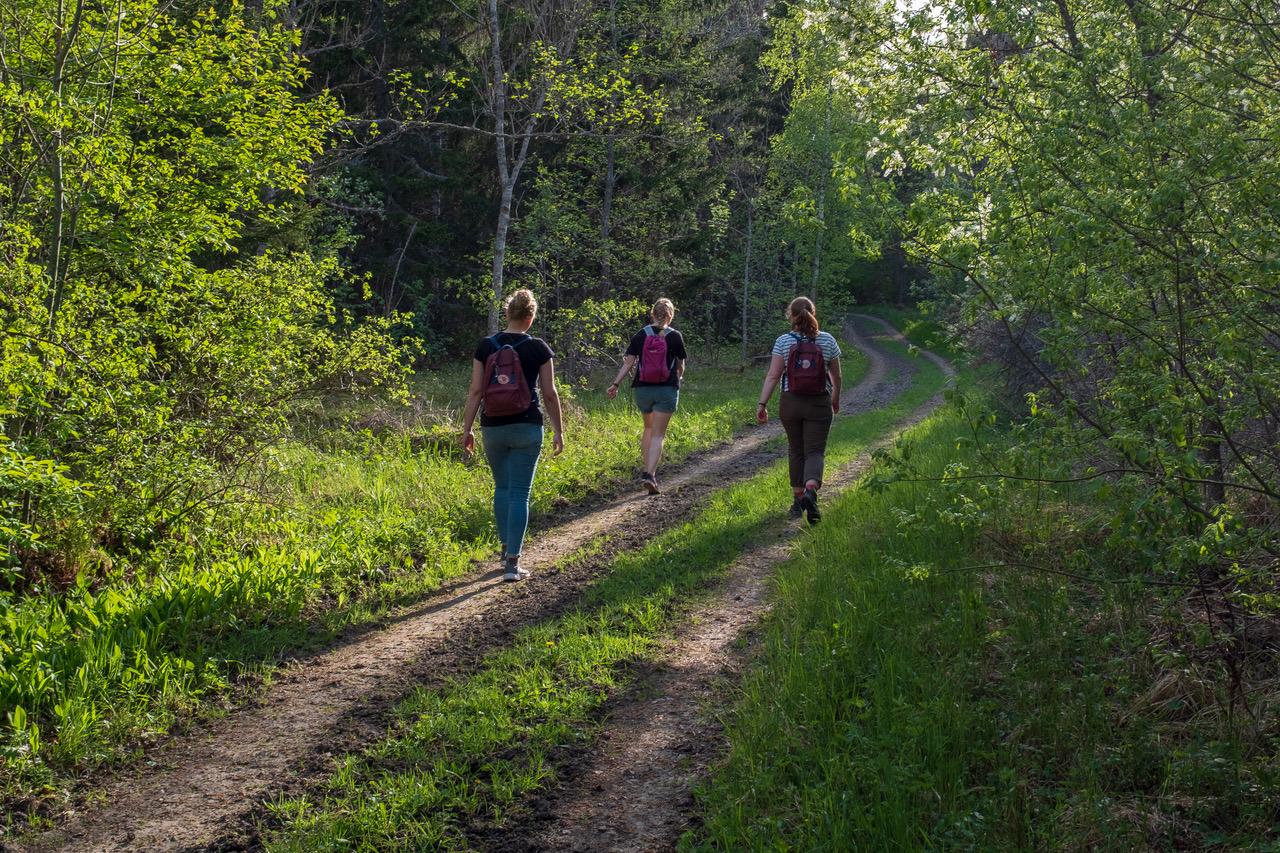 Stephanie Jarvers, Maria Korten und Anna Nick bei einer Wanderung
