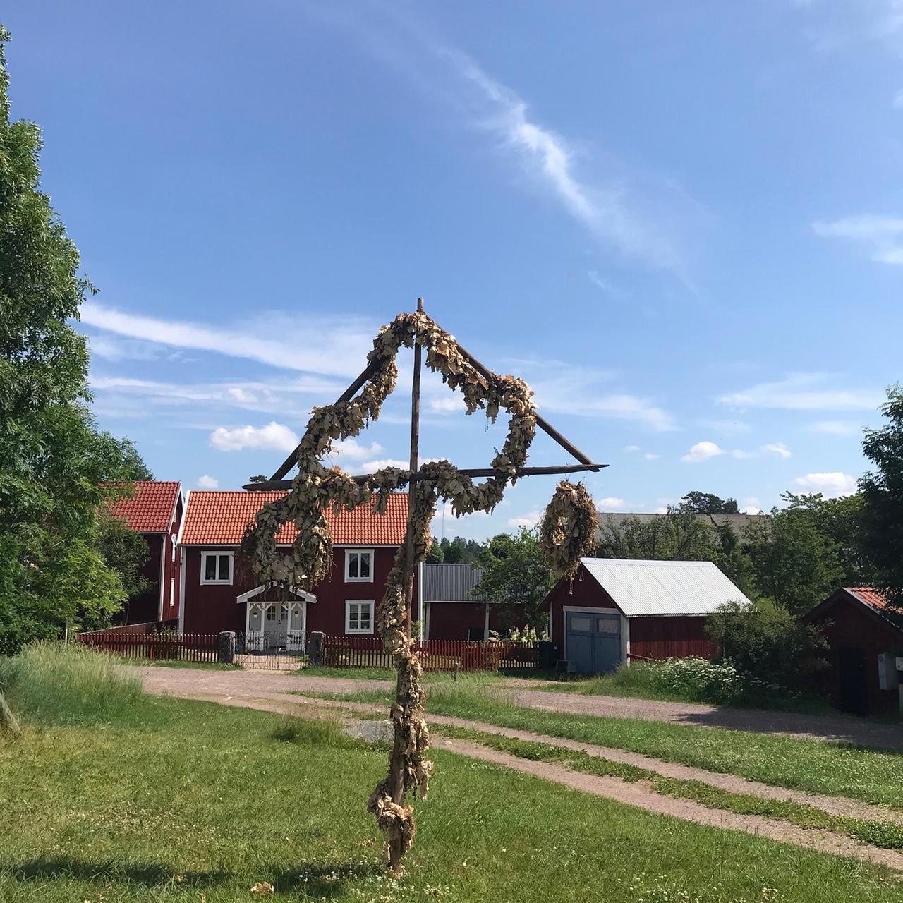 Midsommar in Zeiten von Corona: vertrockneter Midsommarbaum aus 2019