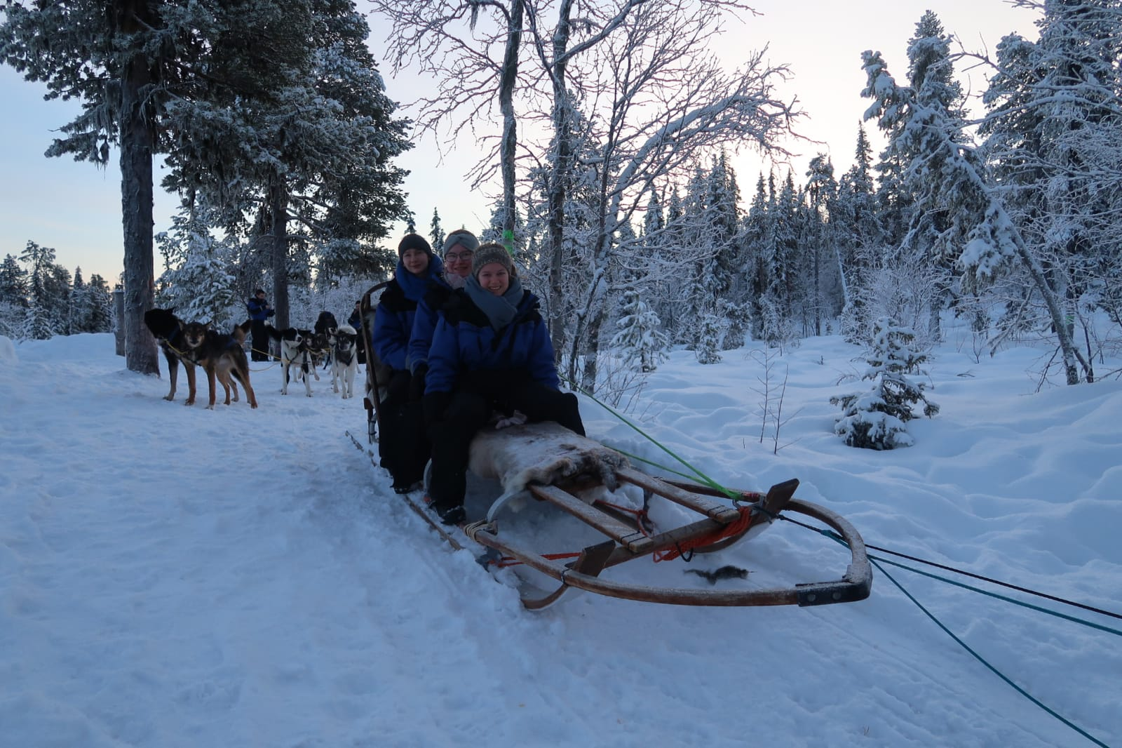 Hundeschlittentour in Kiruna