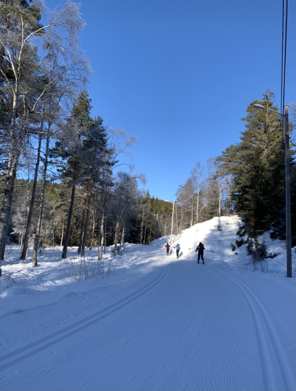 Ordentlich Betrieb auf den Skitracks