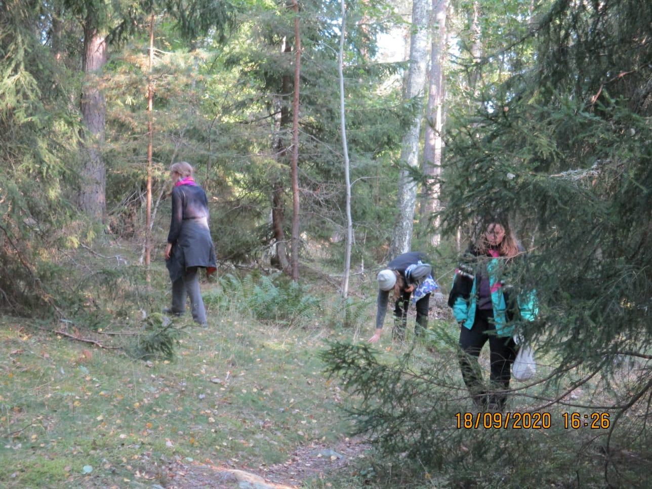 Auf Pilz suche (Foto: Clara)