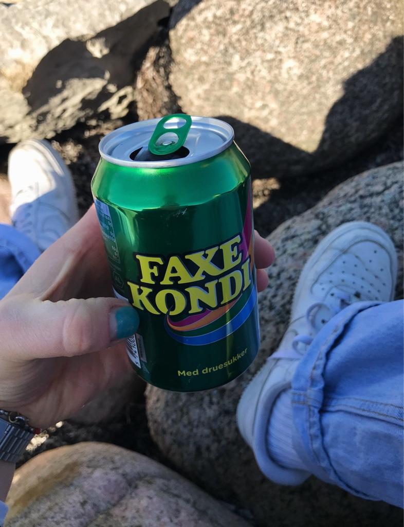 Typisch dänisch faxe kondi am Wasser trinken
