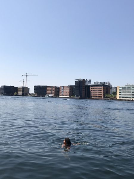 Bei Islands brygge baden