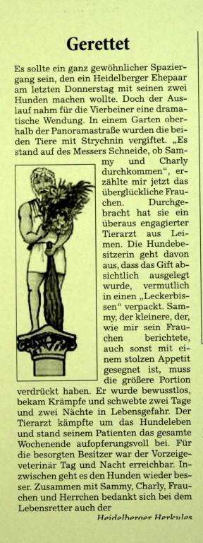Rhein-Neckar-Zeitung 6.4.2010